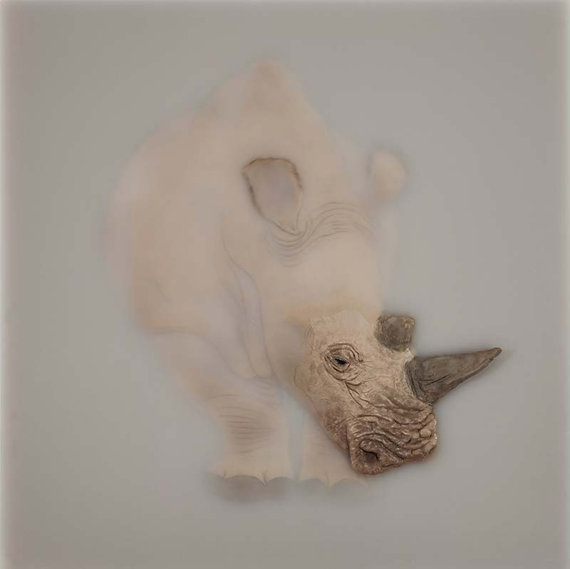 Cai Lei Rhino Artwork